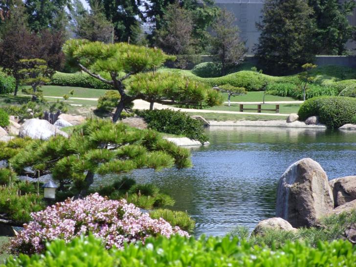 japanese garden landscape design